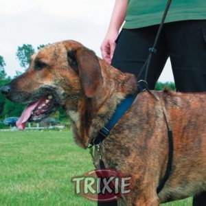 PETTORINA Easy Walk Basic Trixie